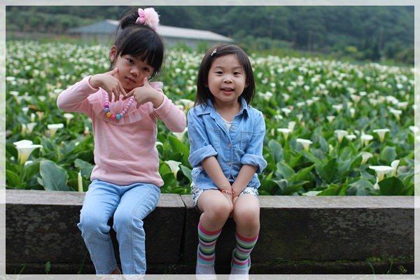 2013單寧女孩在竹子湖芋見愛‧情 (269).JPG