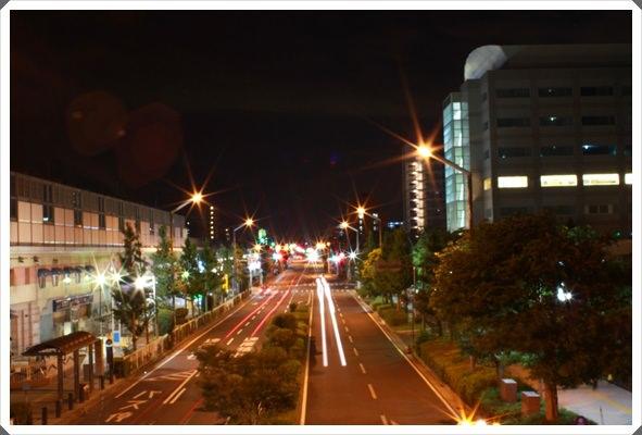 2013。熱遊日本東京♪(217)