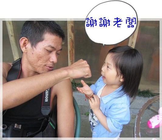 2013單寧女孩在竹子湖芋見愛‧情 (133).JPG