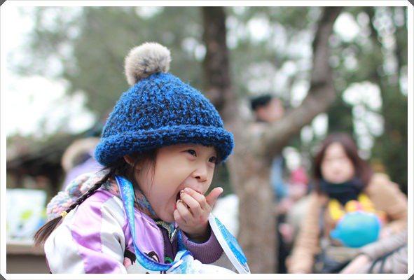 2015冬遊日本。東京迪士尼樂園之安娜與艾莎的冰雪夢幻 (102).JPG