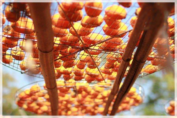 好久不見的金牛會2013年第二次合體企投@味衛佳柿餅觀光農場→金漢柿餅教育園區→金勇DIY休閒農場 (27)
