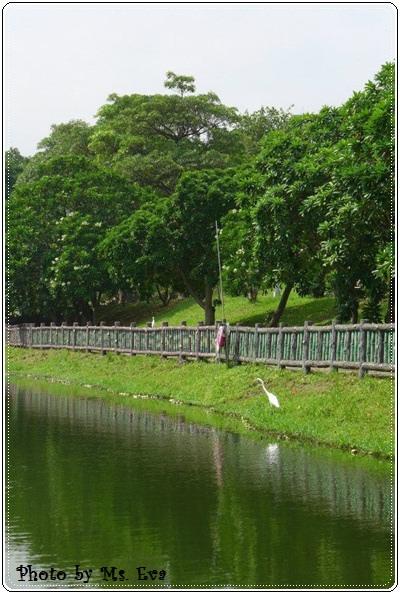 【小猴媽❤大創】 宛如夢幻婚禮般的粉嫩春日野餐 at 南港公園 (168).JPG