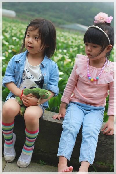 2013單寧女孩在竹子湖芋見愛‧情 (165).JPG