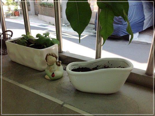 【小猴媽❤大創】園藝小物。手指頭由黑轉綠就靠它們了!! (18).jpg