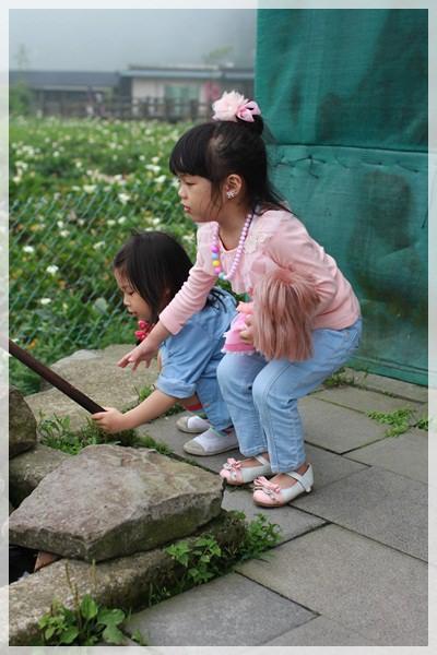 2013單寧女孩在竹子湖芋見愛‧情 (208).JPG