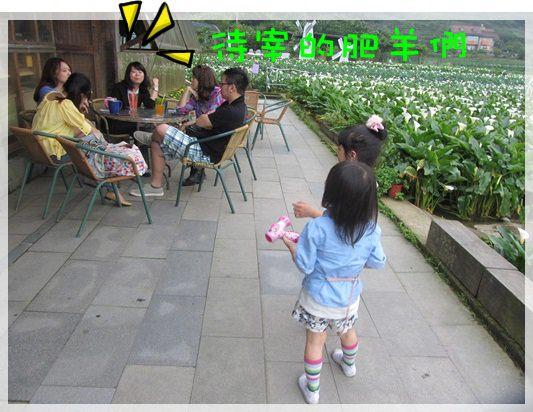 2013單寧女孩在竹子湖芋見愛‧情 (140).JPG