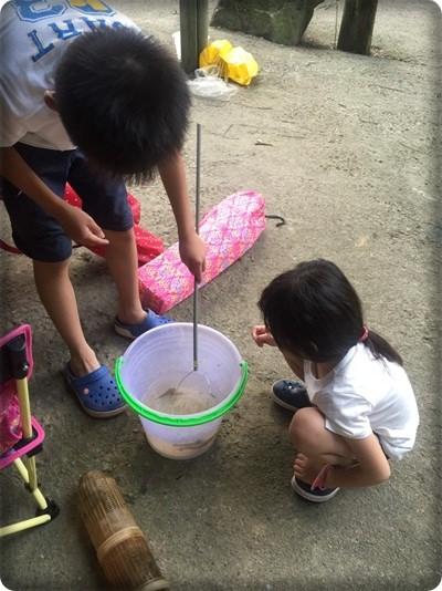 3露。用露營慶祝母親節@新竹北埔永茂森林山莊&苗栗逐露獅潭 (97)