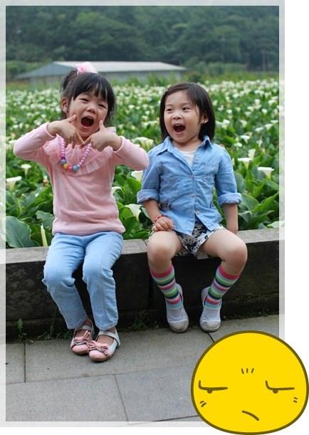 2013單寧女孩在竹子湖芋見愛‧情 (270).JPG