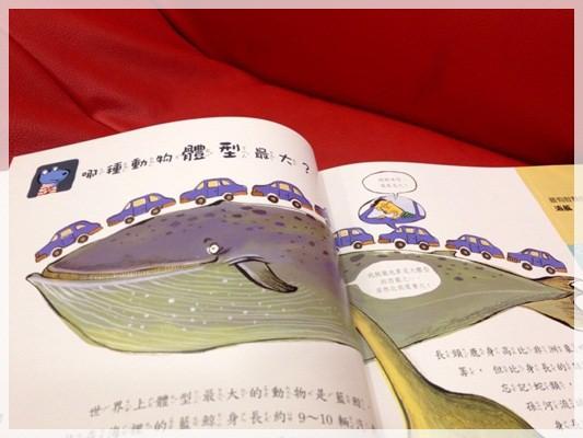 【推薦好書】兒童好奇心大百科&與大自然捉迷藏 (21)
