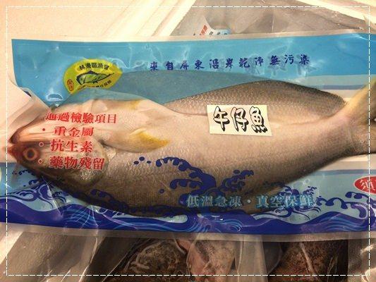 ﹝活動﹞2015年全國優質石斑魚頒獎典禮。認識冷凍石斑&在地好漁民 (20).jpg