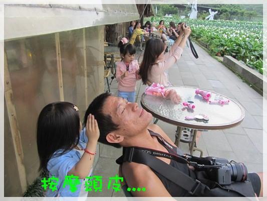 2013單寧女孩在竹子湖芋見愛‧情 (127).JPG