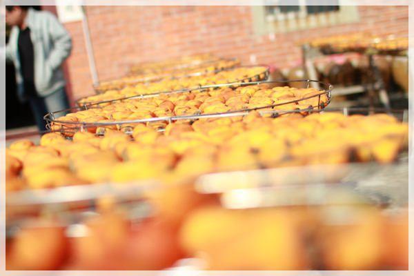 好久不見的金牛會2013年第二次合體企投@味衛佳柿餅觀光農場→金漢柿餅教育園區→金勇DIY休閒農場 (13)