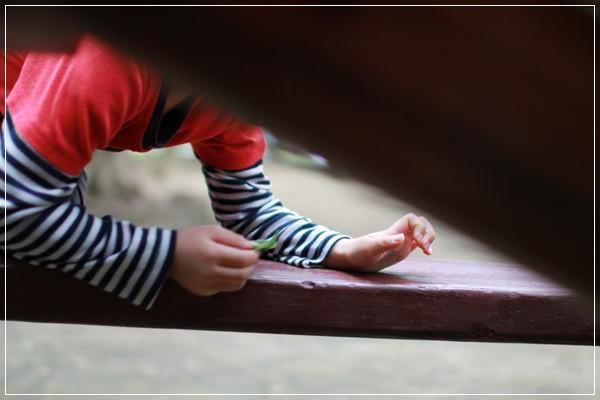 【小猴媽❤大創】 向璐露野的白色野餐派對及TLC台北野餐日致敬 at 玉成公園 (7).JPG