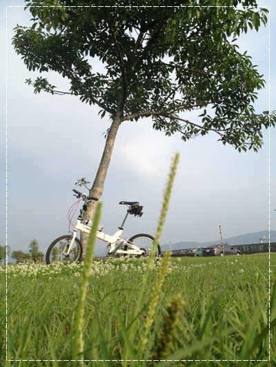 ﹝4Y8M4W2D﹞美堤河濱公園騎單車去 (69)