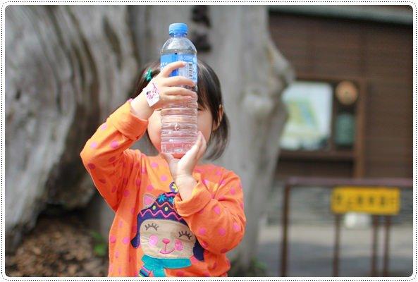 【宜蘭。小牛姐姐4歲生日之旅】 (428)