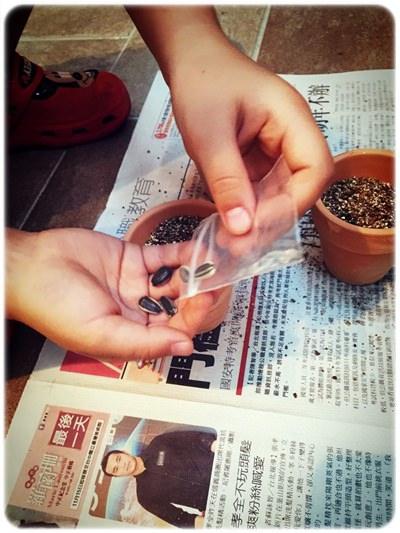 【小猴媽❤佈置】特力屋。樂園藝之CoolOne迷你樂活盆栽組 & LOFT底部防滑澆花器 (16).jpg