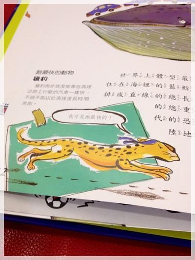 【推薦好書】兒童好奇心大百科&與大自然捉迷藏 (19)