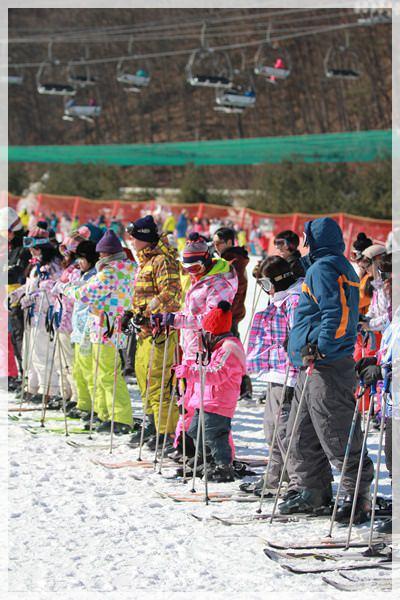 2016。首爾滑雪行 (180).JPG