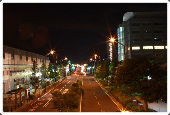 2013。熱遊日本東京♪(216)