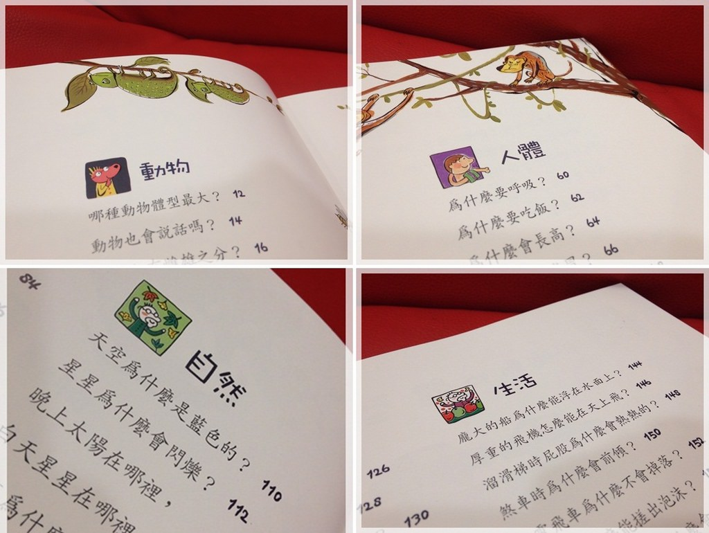 【推薦好書】兒童好奇心大百科&與大自然捉迷藏 (18)