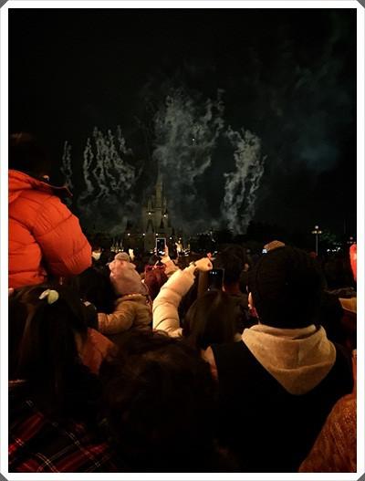 2015冬遊日本。東京迪士尼樂園之安娜與艾莎的冰雪夢幻 (163).jpg