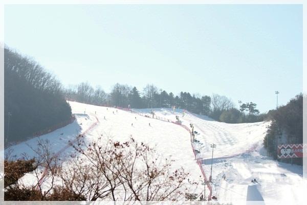 2016。首爾滑雪行 (171).JPG