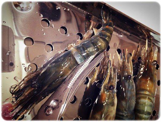 【小猴媽❤佈置】HOLA。讓蝦兵蟹將都好抖抖抖~ㄟ日本貝印蟹剪 (5).jpg