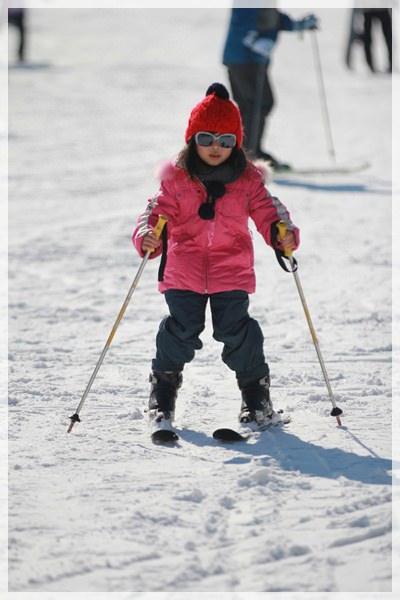 2016。首爾滑雪行 (230).JPG