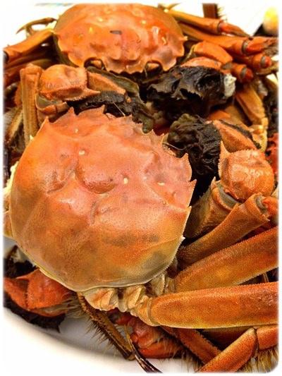 【小猴媽❤佈置】HOLA。讓蝦兵蟹將都好抖抖抖~ㄟ日本貝印蟹剪 (8).jpg