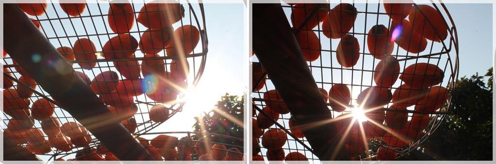 好久不見的金牛會2013年第二次合體企投@味衛佳柿餅觀光農場→金漢柿餅教育園區→金勇DIY休閒農場 (24)