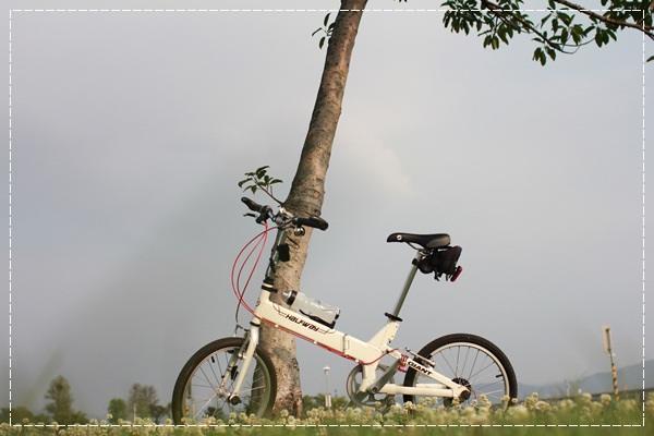 ﹝4Y8M4W2D﹞美堤河濱公園騎單車去 (2)