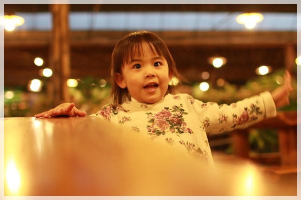 好久不見的金牛會2013年第二次合體企投@味衛佳柿餅觀光農場→金漢柿餅教育園區→金勇DIY休閒農場 (94)