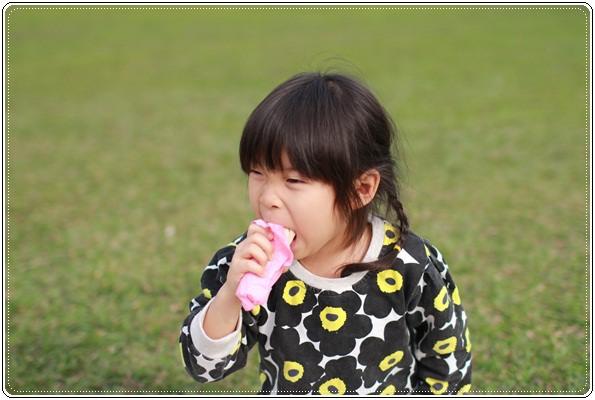 【小猴媽❤大創】 宛如夢幻婚禮般的粉嫩春日野餐 at 南港公園 (64).JPG