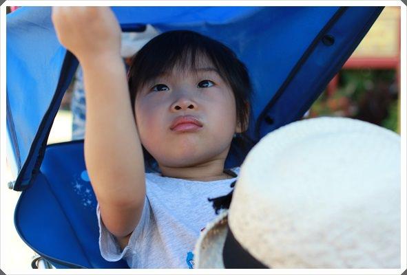 2013。熱遊日本東京♪(346)