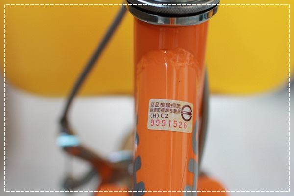 ﹝4Y8M4W2D﹞美堤河濱公園騎單車去 (68)