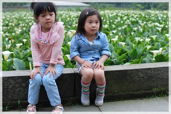 2013單寧女孩在竹子湖芋見愛‧情 (265).JPG
