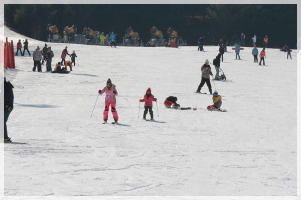2016。首爾滑雪行 (221).JPG